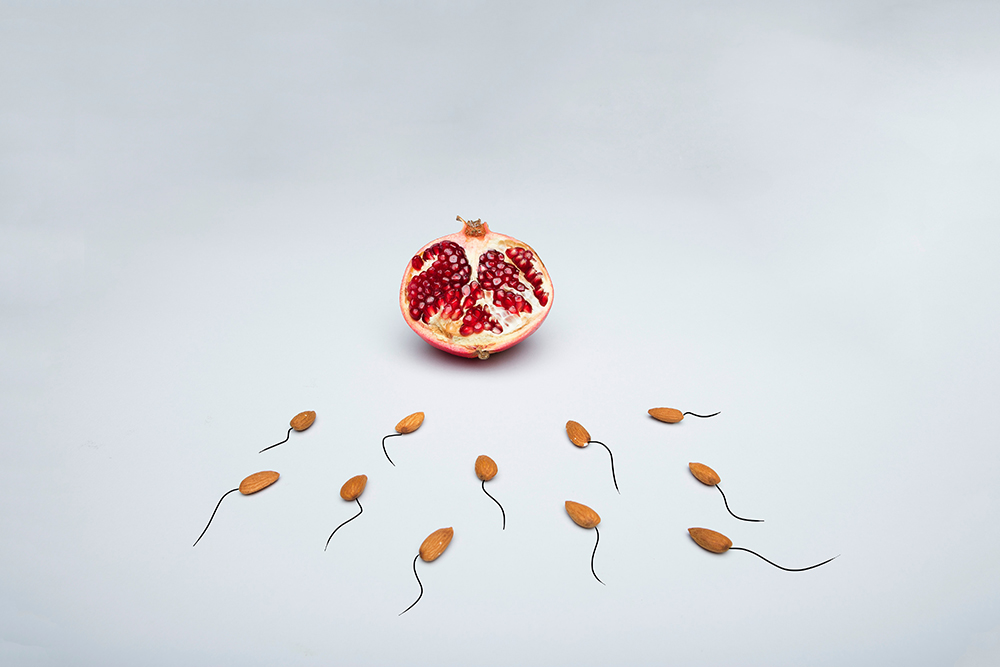 Produce representing the the fertilization process after combining hCG and testosterone therapy